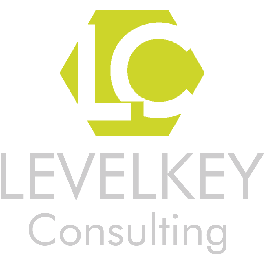 LEVELKEY Consulting Logotyp